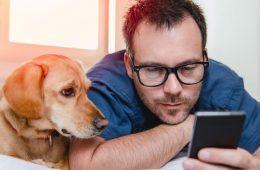 las mejores tiendas online para mascotas en Chile